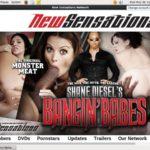Shane Diesel Order
